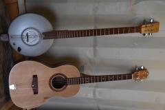 Tenor Guitar 2
