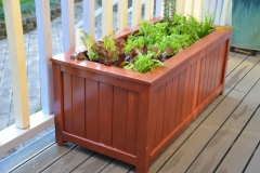 Daves Planter 2